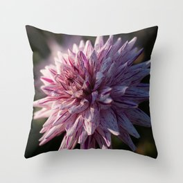 Summer's Finish Throw Pillow