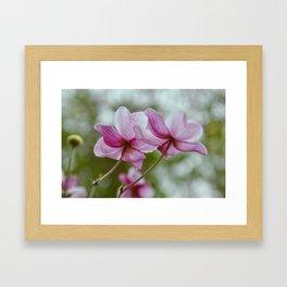 flower photography by Charlotte B Framed Art Print
