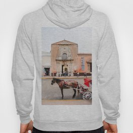 Horse Carriage in Downtown Merida, Mexico Hoody