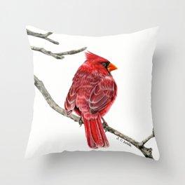 Winter Cardinal On White Throw Pillow