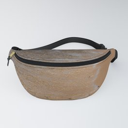 Lake_Michigan Beach, Charlevoix - I Fanny Pack