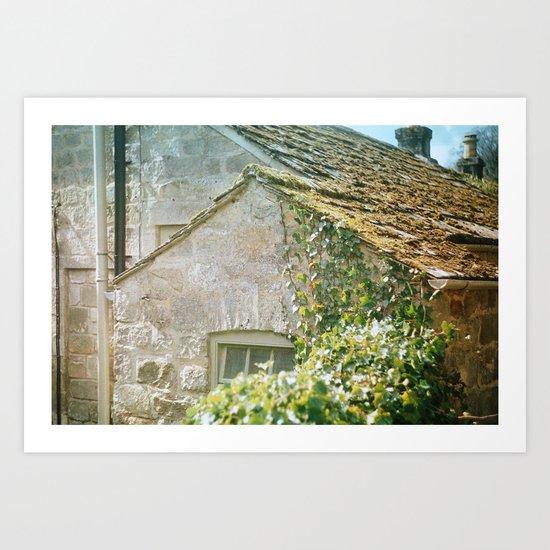 Ivy Cottage Art Print