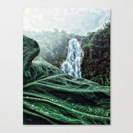 The hidden fall Canvas Print