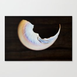 Moon Beach Canvas Print