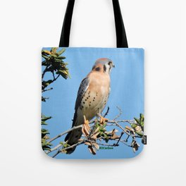 American Kestrel on Watch in La Verne Tote Bag