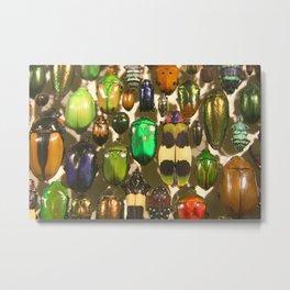 Vibrant Bugs and Beetles Metal Print