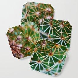 Cactus 3 Coaster