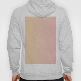 Sunset Pink Coral Gradient Hoody