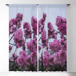 Sakura Blackout Curtain