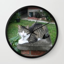 Putting the Pu$$y on a Pedestal  Wall Clock