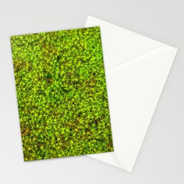 moss green II Stationery Cards
