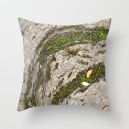 Mossy Stone Curves Throw Pillow