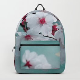 Spring 150 Backpack
