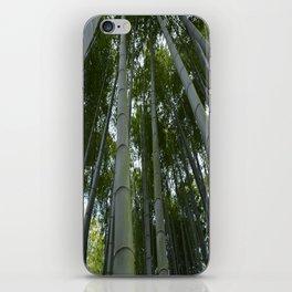 Bambu forest iPhone Skin