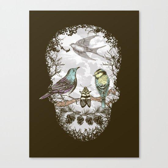 Nature's Skull II Canvas Print