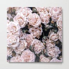 Rustic country botanical blush pink green roses floral Metal Print