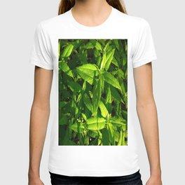 Plants a Plenty T-shirt