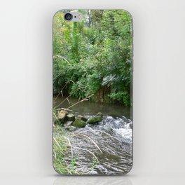 Weser Water iPhone Skin