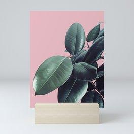Ficus Elastica #14 #CoralBlush #decor #art #society6 Mini Art Print