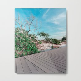 Beach Walkway Metal Print