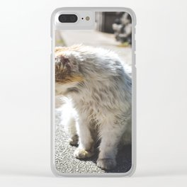 Cat sunbathing Clear iPhone Case