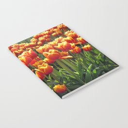 Tulips Are Better Than One Notebook