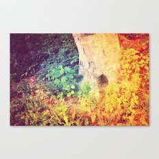 Dreaming in Color (of Another World) Canvas Print