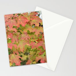 Maple Leaves | Canada 150 | Nadia Bonello Stationery Cards