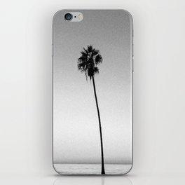 PALM TREES XVI / San Diego, California iPhone Skin