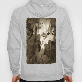Mixed color Poinsettias 1 Antiqued Hoody