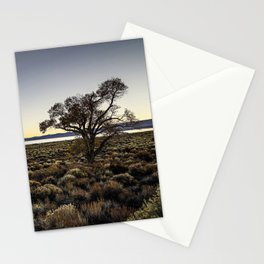 California: Mono Tree at Mono Lake Stationery Cards