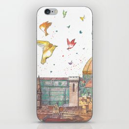 Colors Of Florence iPhone Skin
