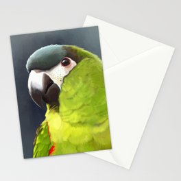 Hanhs Macaw Stationery Cards