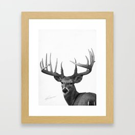 The Majestic Trophy Buck - Deer Graphite Pencil Drawing - by Julio Lucas Framed Art Print