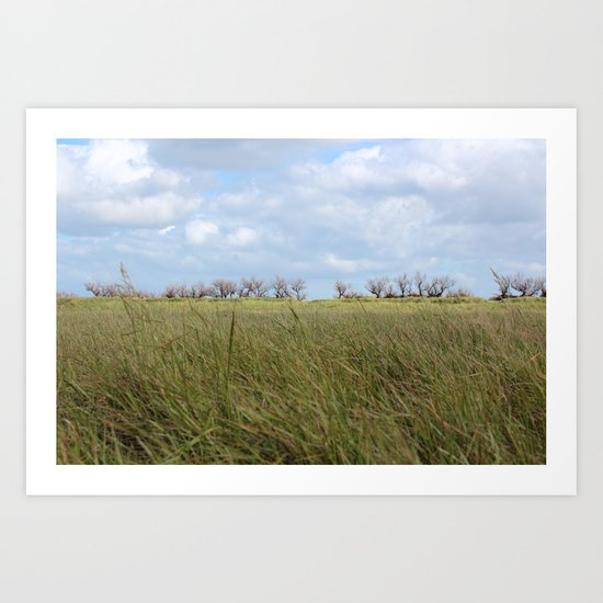 A grass land Art Print