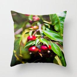Crabby Apples Throw Pillow