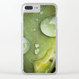 Raindrops on a green leaf Clear iPhone Case