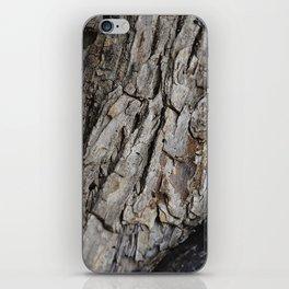 300 Year Old Tree Bark iPhone Skin