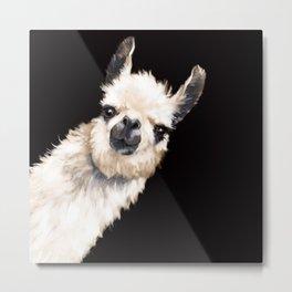 Sneaky Llama in Black Metal Print