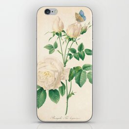 Rose Flower Color Pencil Hand Drawing iPhone Skin