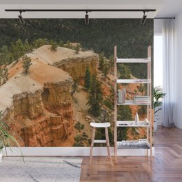 Piracy Point View at Bryce Canyon National Park Wall Mural