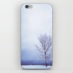 Silver Tree iPhone & iPod Skin