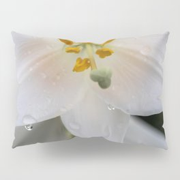 Raindrops on lily Pillow Sham
