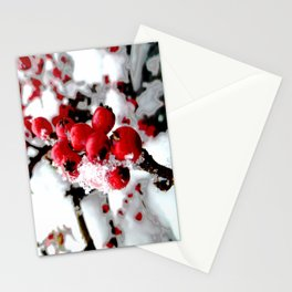 Bright Red Berries Stationery Cards