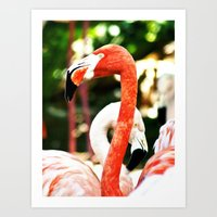 hot pink Art Prints featuring Hot Pink by Colin's Workshop