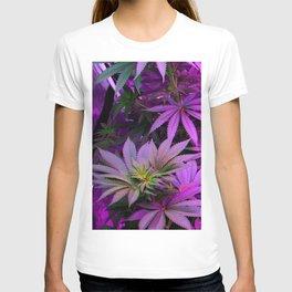 Colorado Marijuana LED Grow Lights T-shirt