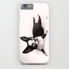 The Little Fat Boston Terrier iPhone 6 Slim Case