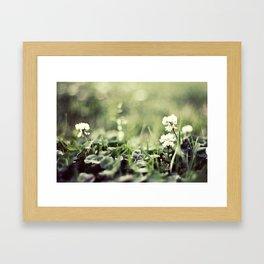 morning flowers fading Framed Art Print
