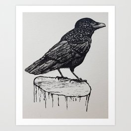 Observant Crow Art Print