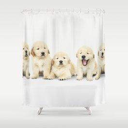 Portrait Of Golden Retriever Puppies Shower Curtain